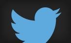 Twitter Social Link