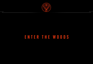 Enter The Woods