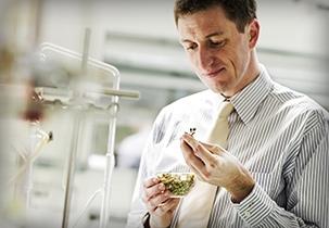 Dr. Berndt Finke – Der Experte
