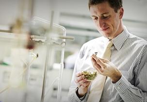 Dr Berndt Finke – the expert